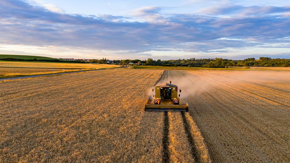 چرا کشاورزی مهم است