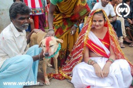 ازدواج دختر با سگ