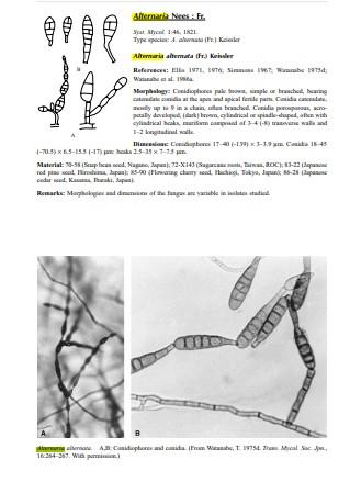 کتاب شناسایی قارچ های میکروسکوپی