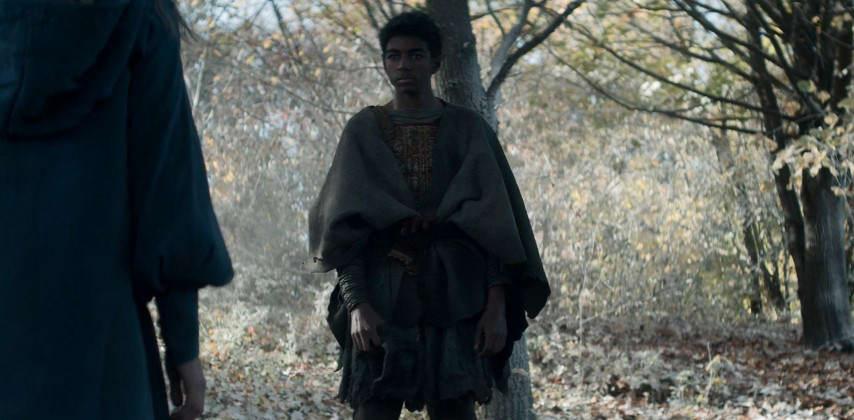 الف سیاهپوست در سریال ویچر