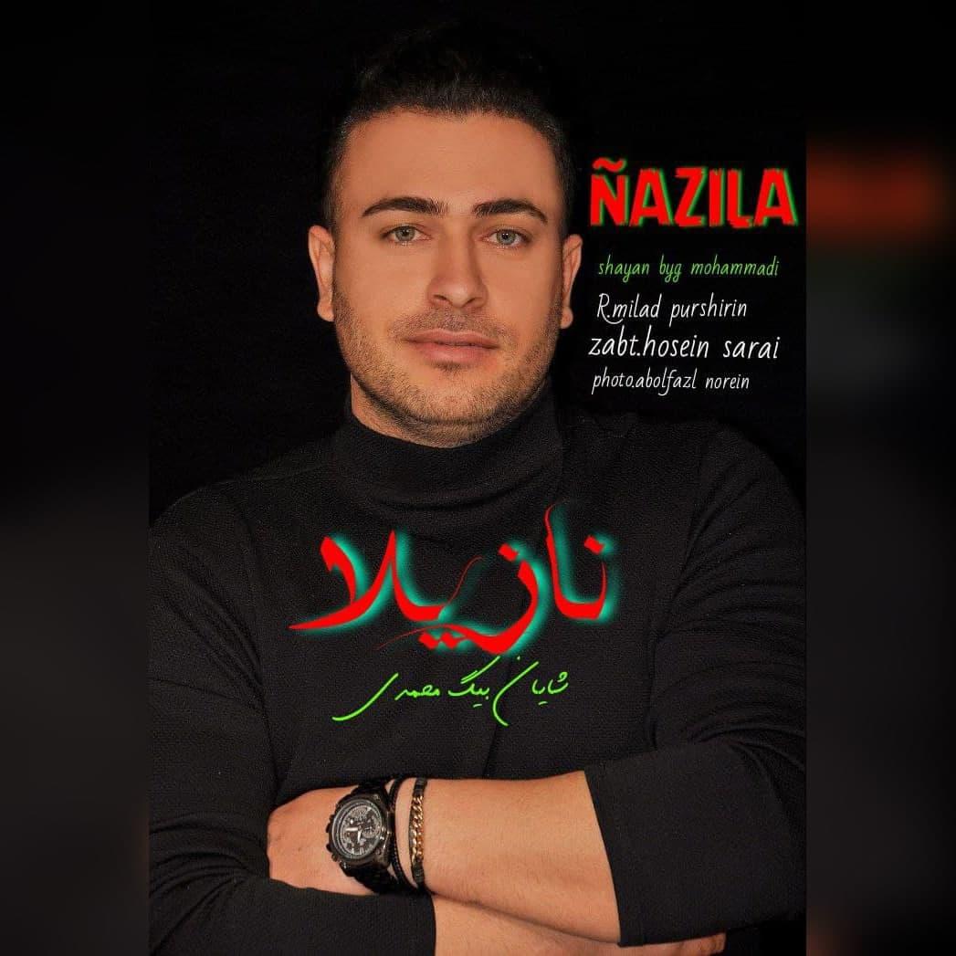 https://s16.picofile.com/file/8428734750/18Shayan_Beg_Mohammadi_Nazila.jpg